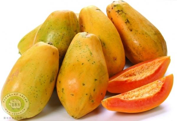 水果禮盒-木瓜